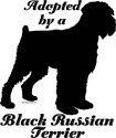 ADOPTED by a Black Russian Terrier