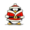 Santa Claus penguin