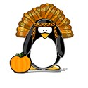 Indian Chief Penguin