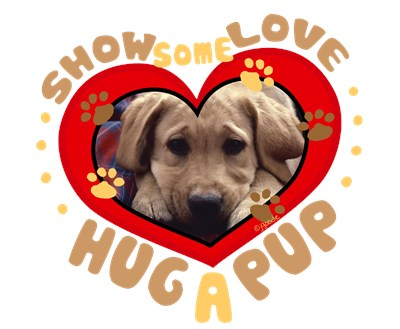 Hug a Pup - Golden Retriever