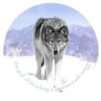 Conservation - Wolves