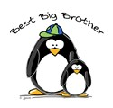 Best Big Brother Penguins