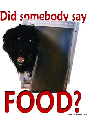 Dog: Did Someone Say Food?