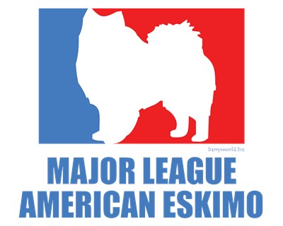 american major league