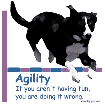 Agility Excuses: Are you havng fun?