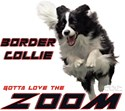 Border Collie ZOOM!