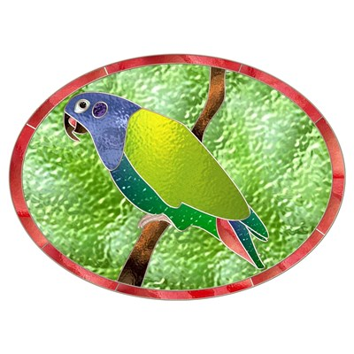 Stained Glass Pionus Parrot