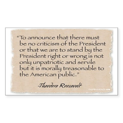 : Criticism -Roosevelt Political Rectangle Sticker by CafePress