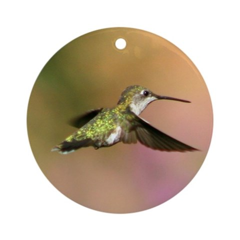Valentine Hummingbird Ornament Round Nature Round Ornament by CafePress