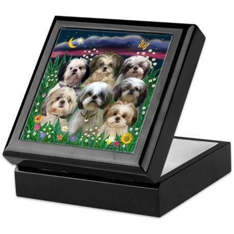 7 Shih Tzus in Moonlight Keepsake Box