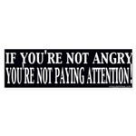 Not Paying Attention? Sticker (Bumper)