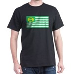 Ecology Flag - United States America Ecolo T-Shirt