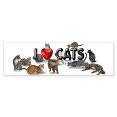 Sticker (Bumper) I Love Cats