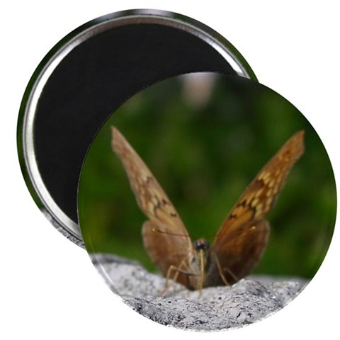 2.25 Tawny Emperor Butterfly Magnet 10 pack Butterfly 2.25 Magnet 10 pack by CafePress
