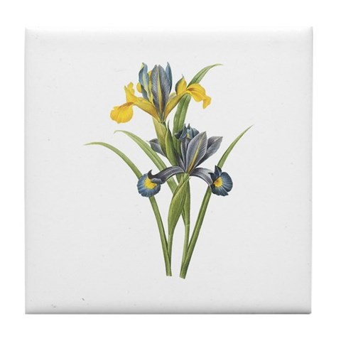 Vintage Iris 2 Christmas gift xmas gift birthday gift Tile Coaster by CafePress