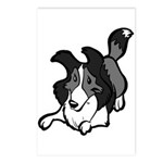 Collie Play Bows Postcards (Package of 8)