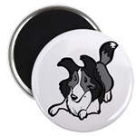 "Collie Play Bows 2.25"" Magnet (100 pack)"