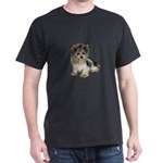 Biewer Yorkie 2 T-Shirt