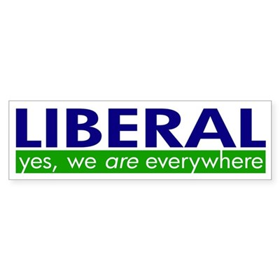 Liberal Everywhere Bumper Sticker