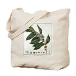 Coffee Botanical Print Tote Bag