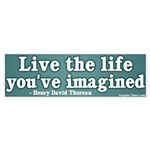 Life You've Imagined Bumper Sticker