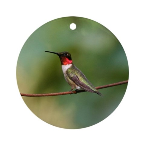 Male Ruby-throated Hummingbird Ornament Nature Round Ornament by CafePress