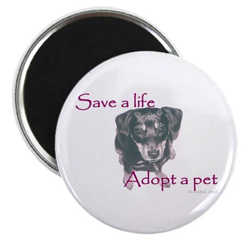 - Blissful Dogs Save a Life, Min Pin Pet Magnet by CafePress