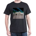 Polar Bear Resting T-Shirt