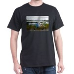 High wing aircraft, blue & white, Alas T-Shirt