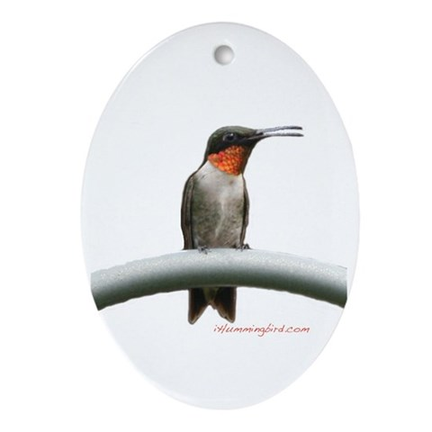 Hummingbird RubyThroat Photography Oval Ornament by CafePress
