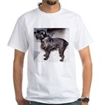 brussels griffon black full T-Shirt