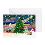CHRISTMAS MAGICWioth a Lhasa Apso (7)
