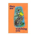 They Are Watching You (11x17 poster)