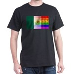 Rainbow Wall Mexican Flag T-Shirt
