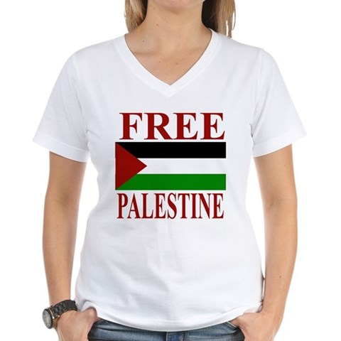 Product Image of Palestine Women's V-Neck T-Shirt