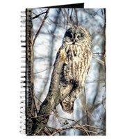 Great Gray Owl Journal