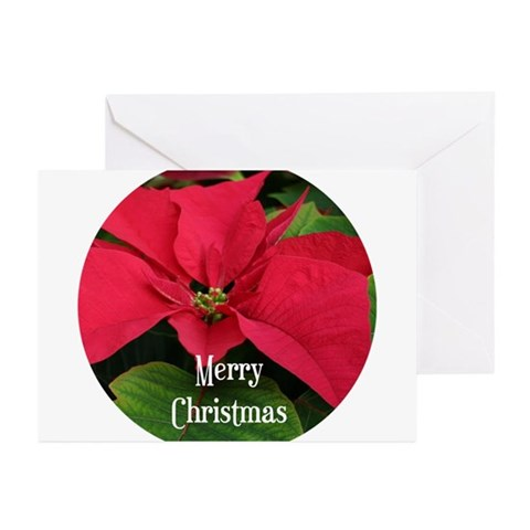 Red Poinsetta Merry Christmas Greeting Cards Pk o Humor Greeting Cards Pk of 20 by CafePress