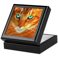 We Love Orange Cats Tile Box
