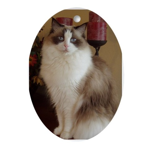 Seal Bicolor Ragdoll Cat Keepsake Oval Cat Oval Ornament by CafePress