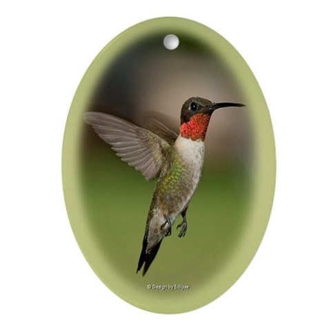 Ruby Throated Hummingbird  Animals Oval Ornament by CafePress