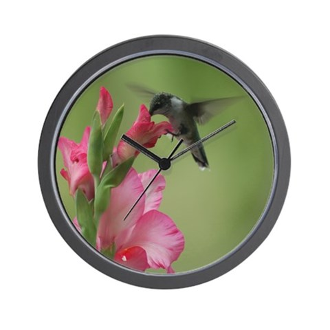 Hummingbird and Gladiolas  Bird Wall Clock by CafePress