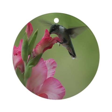 Hummingbird and Gladiolas Ornament Round Bird Round Ornament by CafePress