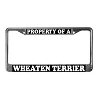 Wheaten Terrier License Plate Frames