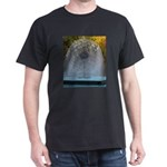 Fountain fantasy T-Shirt