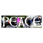 Peace protest bumper sticker
