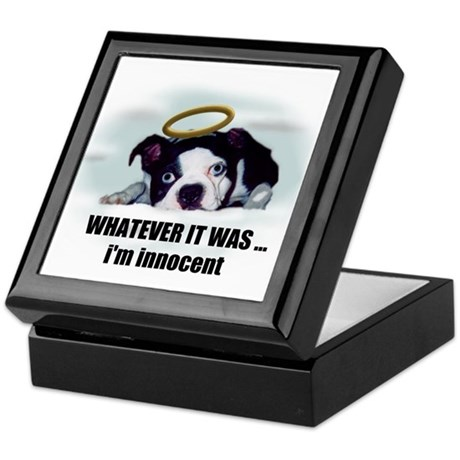 WHATEVER IT WAS IM INNOCENT Keepsake Box