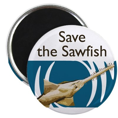 Save the Sawfish Marine Ecology