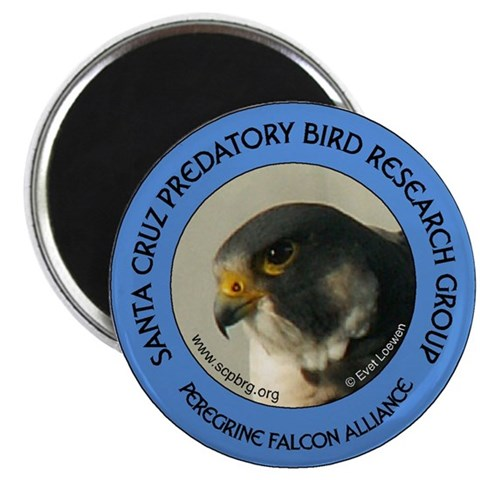 2.25quot; Magnet - Blue 10 pack  2.25 Magnet 10 pack by CafePress