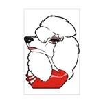 Female Poodle Mini Poster Print