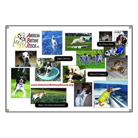 ABR Events  Multi Picture  Banner by CafePress